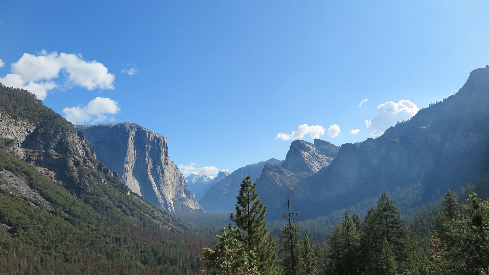 Travel ~ Yosemite National Park