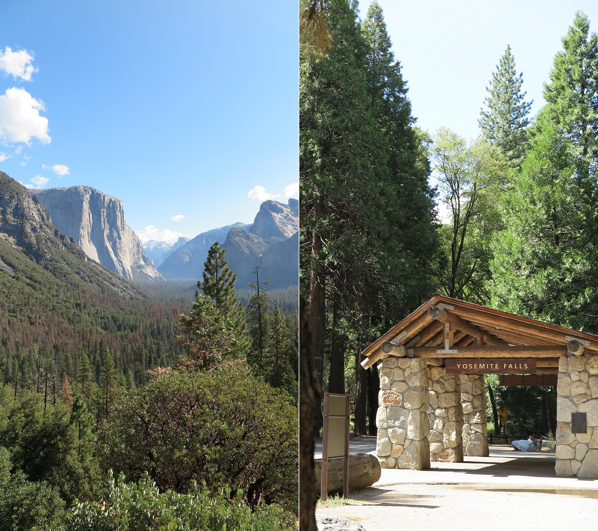 Travel ~ Yosemite National Park