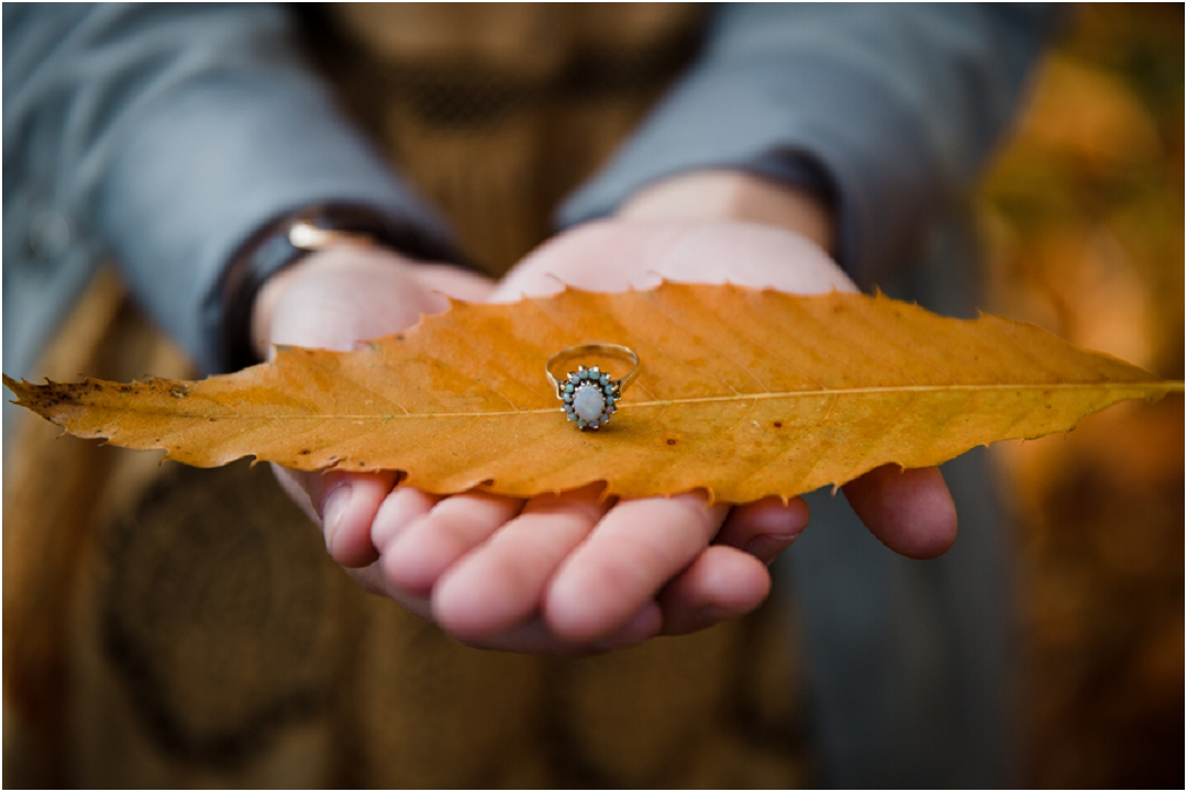 autumn engagement session